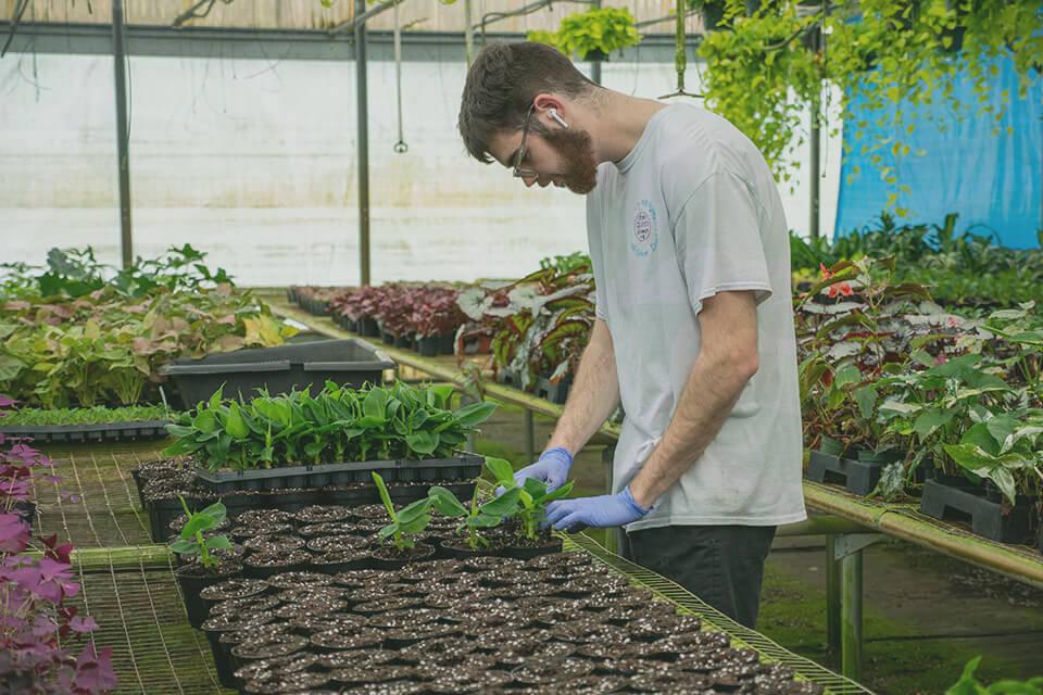 Photo of Gabriella Plants employee working